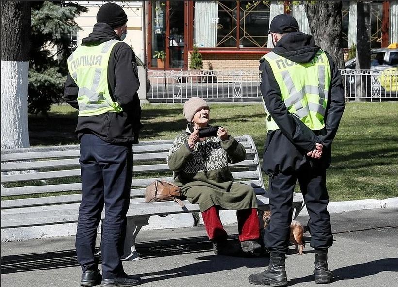 Фото: Комсомольская правда