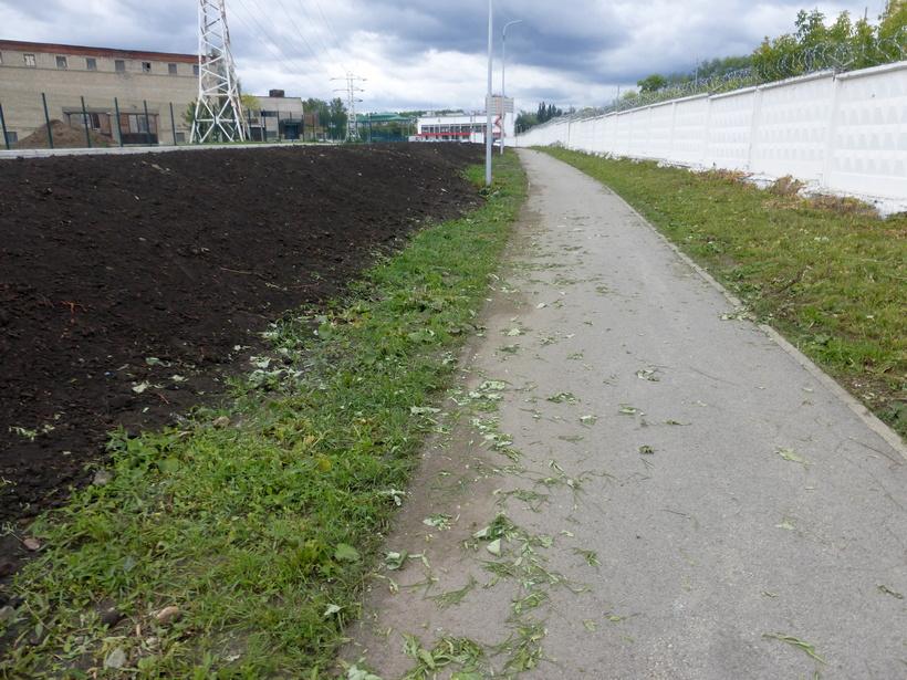 Трава на газонах в «тупике Дронова» выкошена